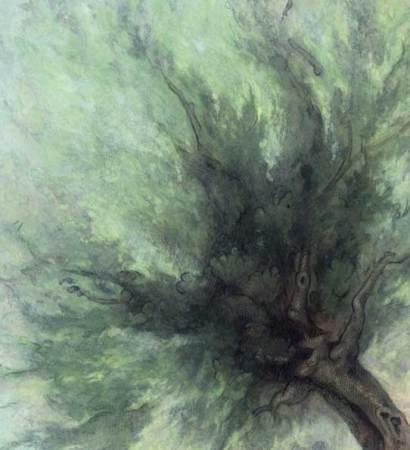 olive tree 1 det.1